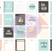 My Prima Planner Embelishments – Journaling Cards – Stay Curious details 1